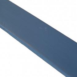 Linoliemaling - Muselblå 1