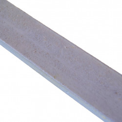 Linoliemaling - Syrén