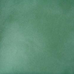 Lasurfarve - Forår