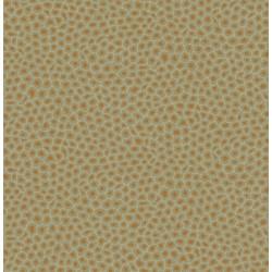 109/6029 - Senzo Spot - The...