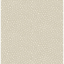 109/6030 - Senzo Spot - The...