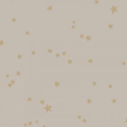 103/3013 - Stars - Whimsical