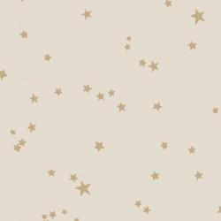 103/3014 - Stars - Whimsical
