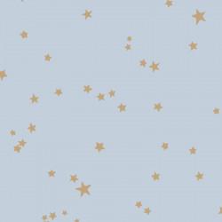 103/3016 - Stars - Whimsical