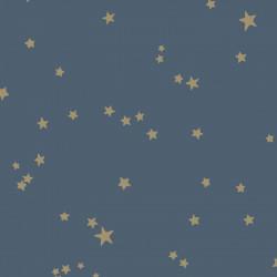 103/3017 - Stars - Whimsical