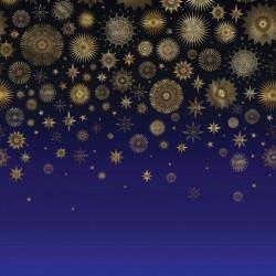 W7495-01 - Daydreams -...