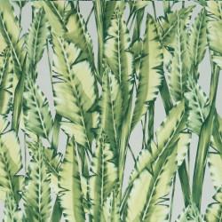W7333-02 - Folium - Tiger Leaf