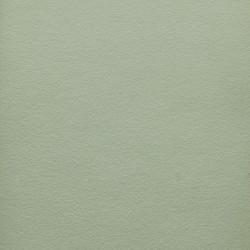 Naturmaling - Euchalyptus