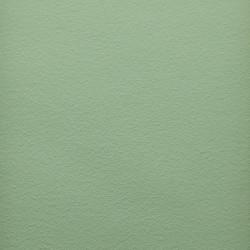 Naturmaling - Palme