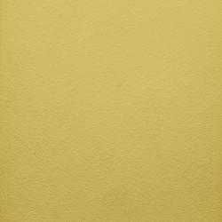 Naturmaling - Limone
